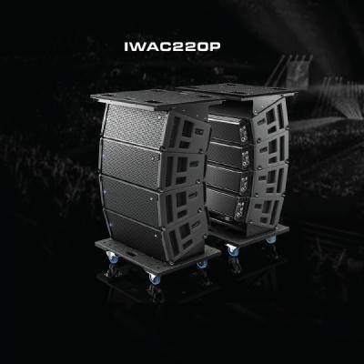 Line Array IWAC220P Verity Audio