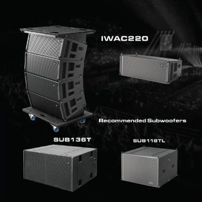 Line Array IWAC220 Verity Audio